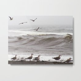 Seagulls and the Surf Metal Print