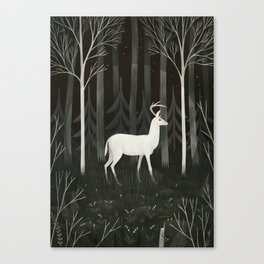 White deer Canvas Print