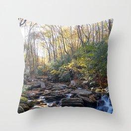 Boone Fork Creek in Autumn Throw Pillow