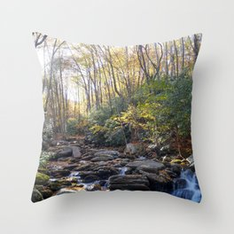 Boone Fork Creek in Autumn Throw Pillow