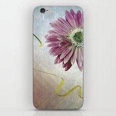 violet daisy with ribbon iPhone & iPod Skin