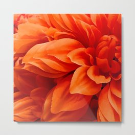 Strawberry-Blonde Tangerine Colored Flower Chic Close-Up Metal Print