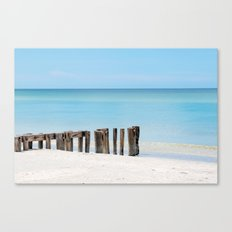 Leading to the Water Canvas Print