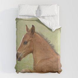 Baby Horse Comforters