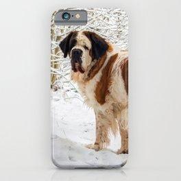 St Bernard dog in the snow iPhone Case