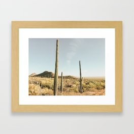 Spirit of the Desert Framed Art Print