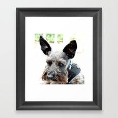 Portrait of a Scotty Framed Art Print