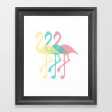 The Three Flamingos Framed Art Print