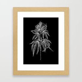 Reverse Cannabis Illustration Framed Art Print