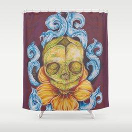 Fetal Skull Shower Curtain