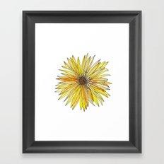 Yellow Gerber Daisy Framed Art Print