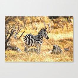 Zebras at Peace Canvas Print