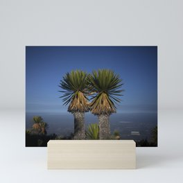 A couple of desert cactus Mini Art Print