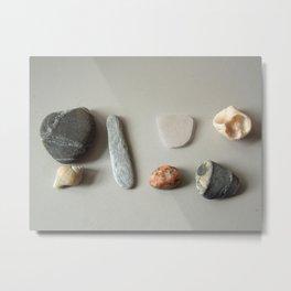 Nature's Bounty Metal Print