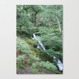 Wales Landscape 5 Mountain Stream Canvas Print