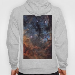 The Devil Nebula Hoody