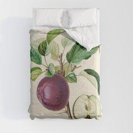 Purple Apple Antique Botanical Illustration Comforters