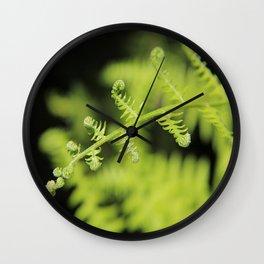 Unfurling Fern Wall Clock