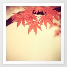 beautiful fall Art Print