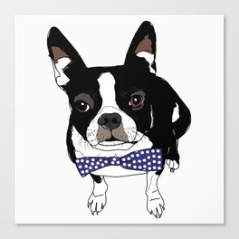 Boston Terrier with a tie Canvas Print