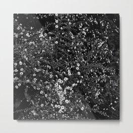 Wht flwr - white flowers Metal Print