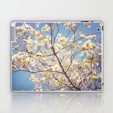 Dogwood Tree - Spring Flowering Tree Photography Laptop & iPad Skin