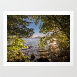 Secret Place By The Lake Art Print