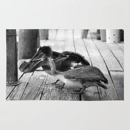 Juvenile Brown Pelican Tale 8 Rug