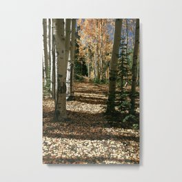 Fall Aspen Tree Hike by OLena Art Metal Print