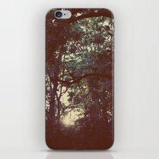 Mantis  iPhone & iPod Skin
