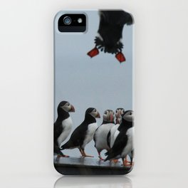 Incoming Puffin - Petit Manan Island, ME iPhone Case