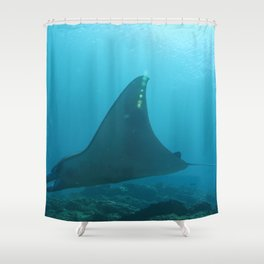 Manta ray touching rays of light Shower Curtain