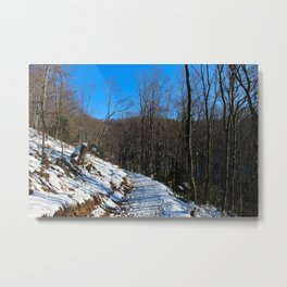 Forest road covered with snow Metal Print