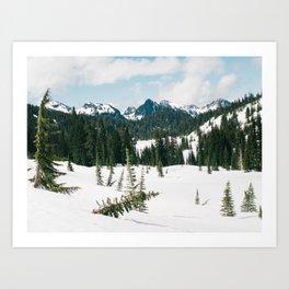 Mount Rainier National Park II Art Print