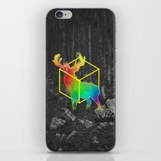 Catch The Reinbow iPhone & iPod Skin