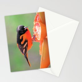 Orange Juice for Breakfast (Baltimore Oriole) Stationery Cards