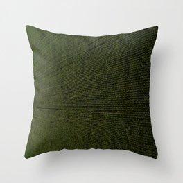 Rural Corn Fields Throw Pillow
