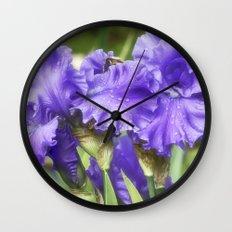 Purple Bearded Irises Wall Clock