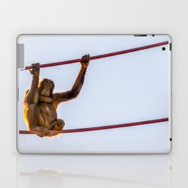 On the Wire Laptop & iPad Skin