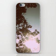 Sun Burned Leaves iPhone & iPod Skin
