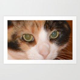 Cat Eyes, Green Eyes, Bedroom Eyes Art Print
