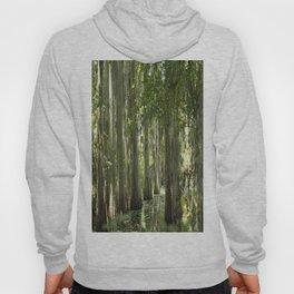 Florida Swamp Hoody