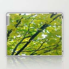 Lush ~ yellow-green leaves 4 U! ~ summer tree Laptop & iPad Skin