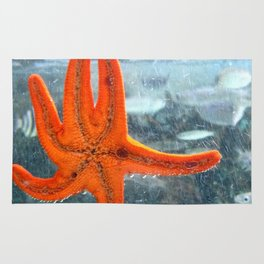 A STAR IN THE OCEAN Rug