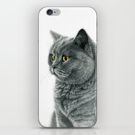 The Chartreux portrait G112 iPhone Skin