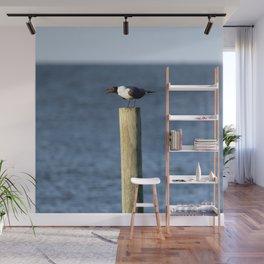 Ocracoke Seagull 3 Wall Mural