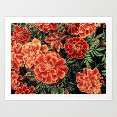 Floral Burst II Art Print