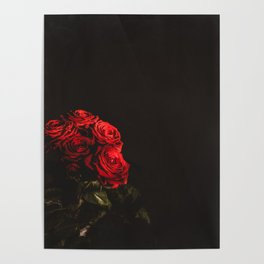 Fine Art Photography Print -  English Rose Poster