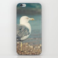 swallow iPhone & iPod Skins featuring Swallow by Piksi