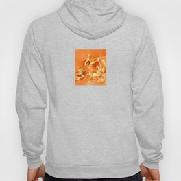 Melon Nature Hoody